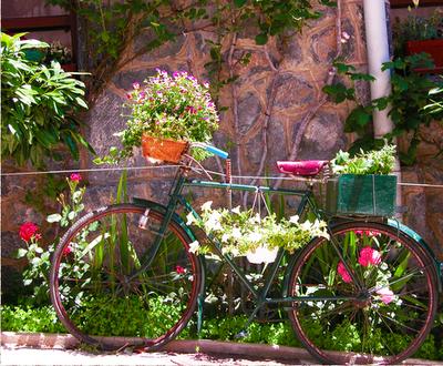 bicicleta de jardins